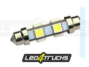 XENON BLANC - 6xSMD LED 24-28V - FESTOON